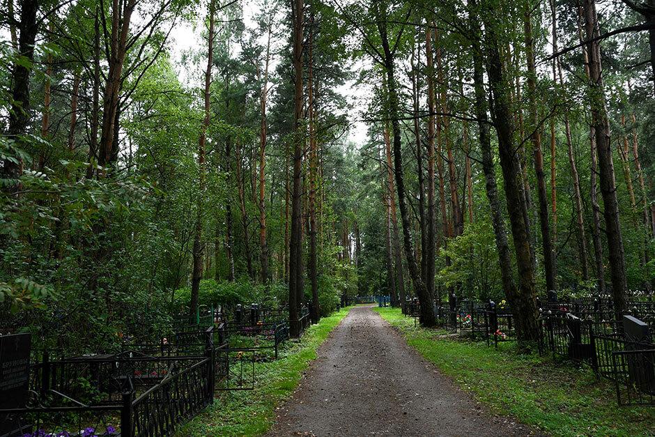 Кладбище Бочевинка. Фото 2