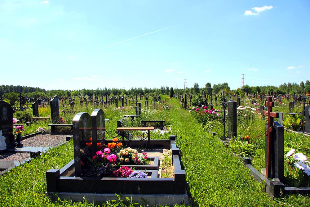 Дементьевское кладбище. Фото 12