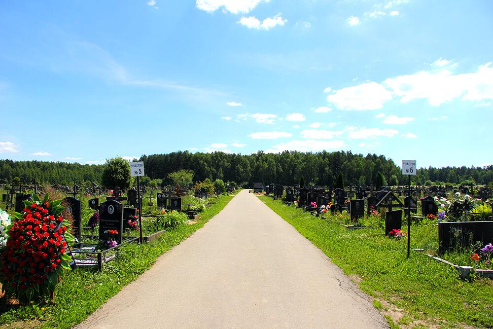 Дементьевское кладбище. Фото 4