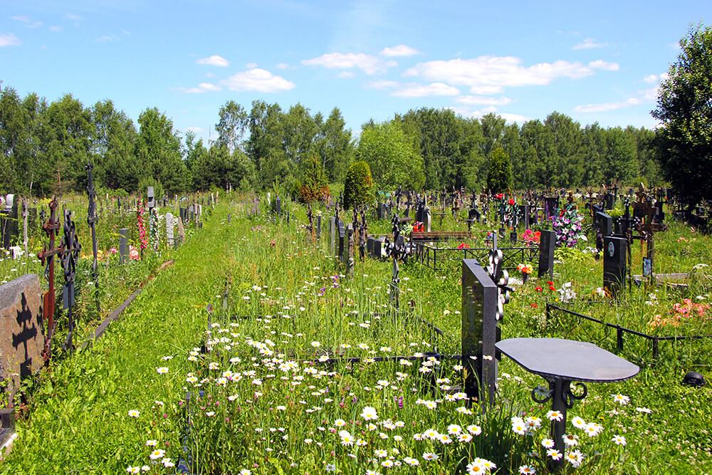 Дементьевское кладбище. Фото 7