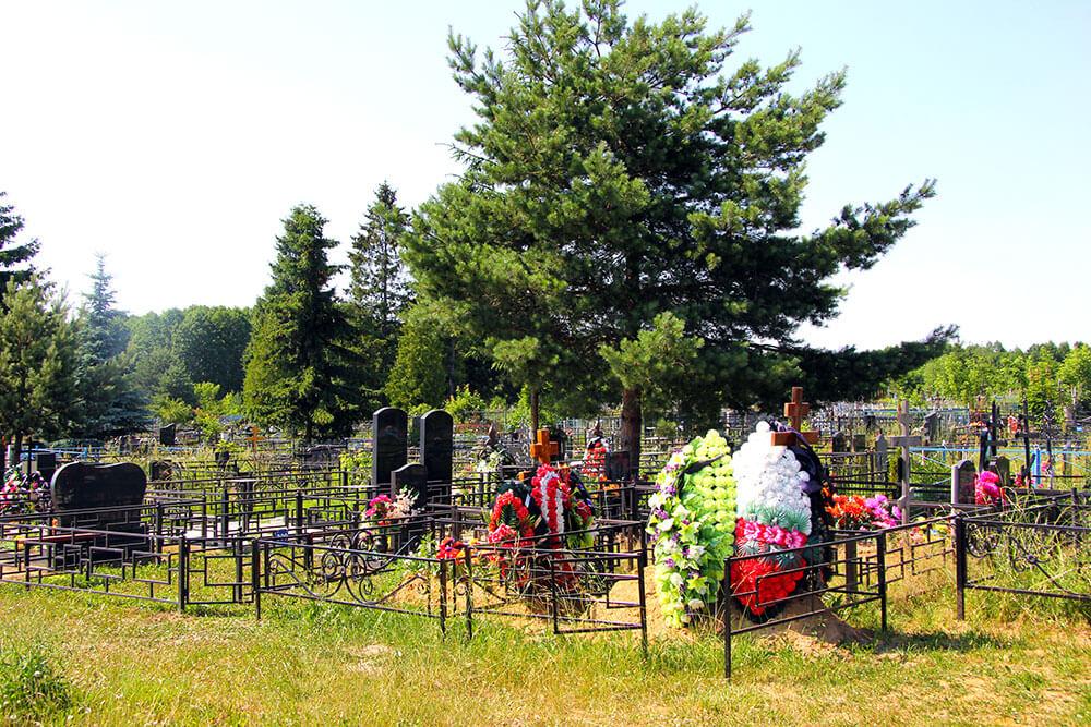 Гжельское кладбище. Фото 2