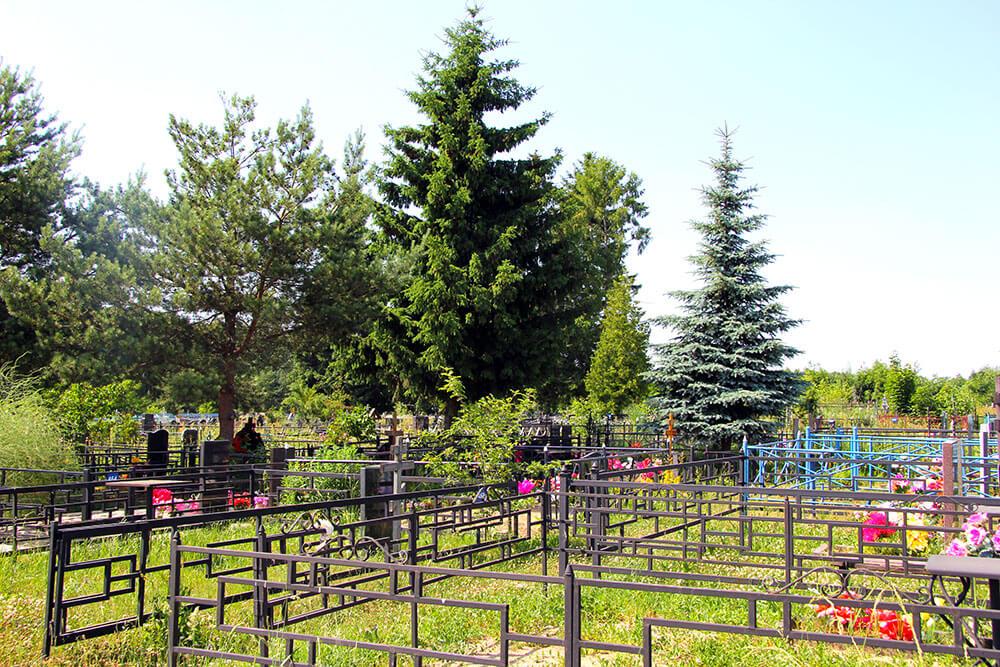 Гжельское кладбище. Фото 8