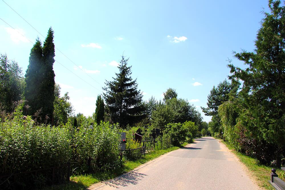 Лайковское кладбище. Фото 3