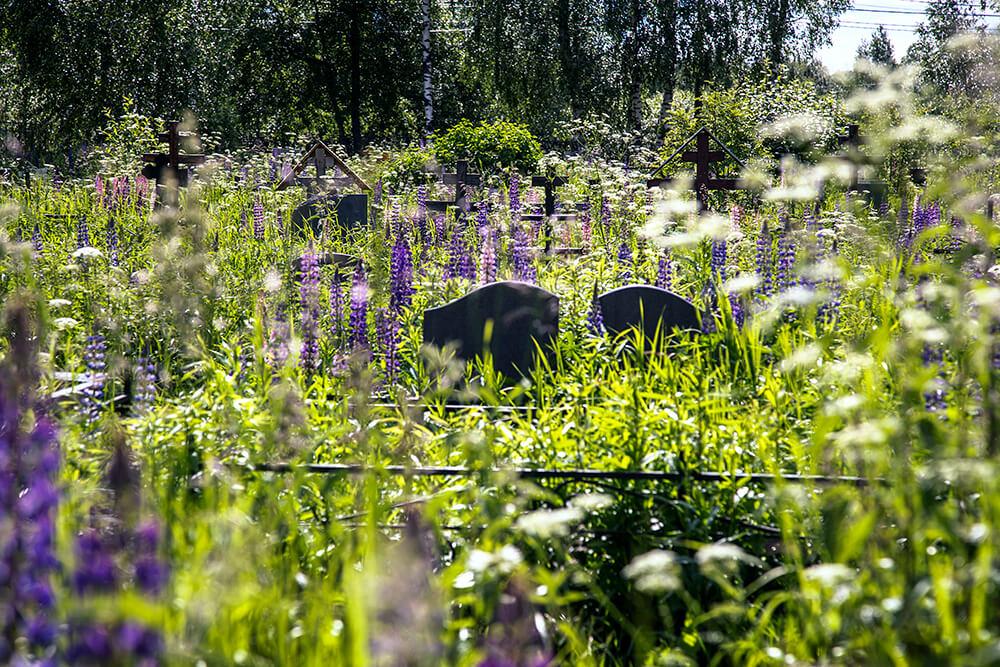 Новодеревенское кладбище (Балашиха). Фото 12