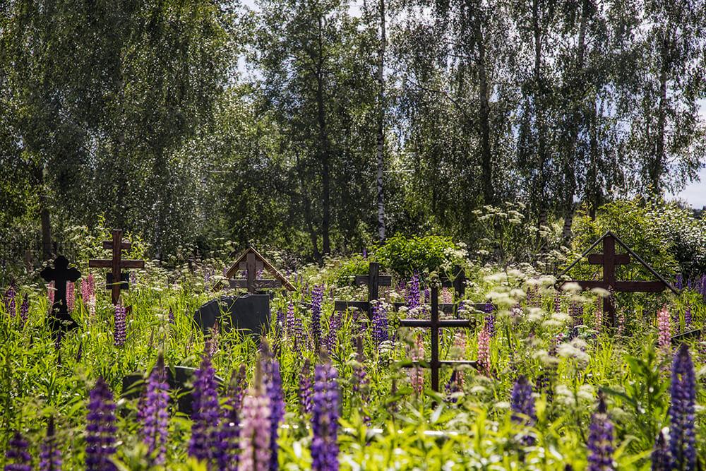 Новодеревенское кладбище (Балашиха). Фото 13