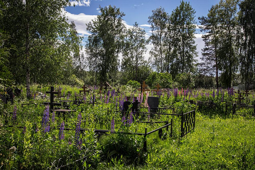 Новодеревенское кладбище (Балашиха). Фото 14