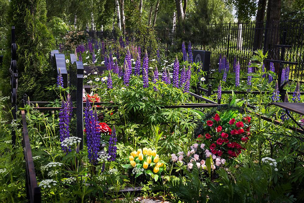 Новодеревенское кладбище (Балашиха). Фото 4