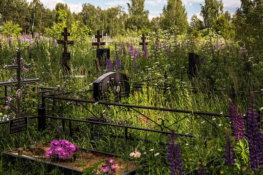 Новодеревенское кладбище (Балашиха). Фото 7
