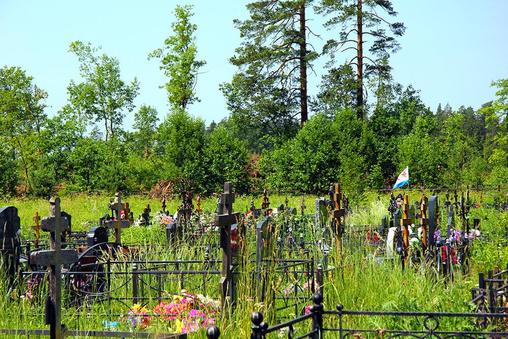 Новое Богословское кладбище. Фото 8