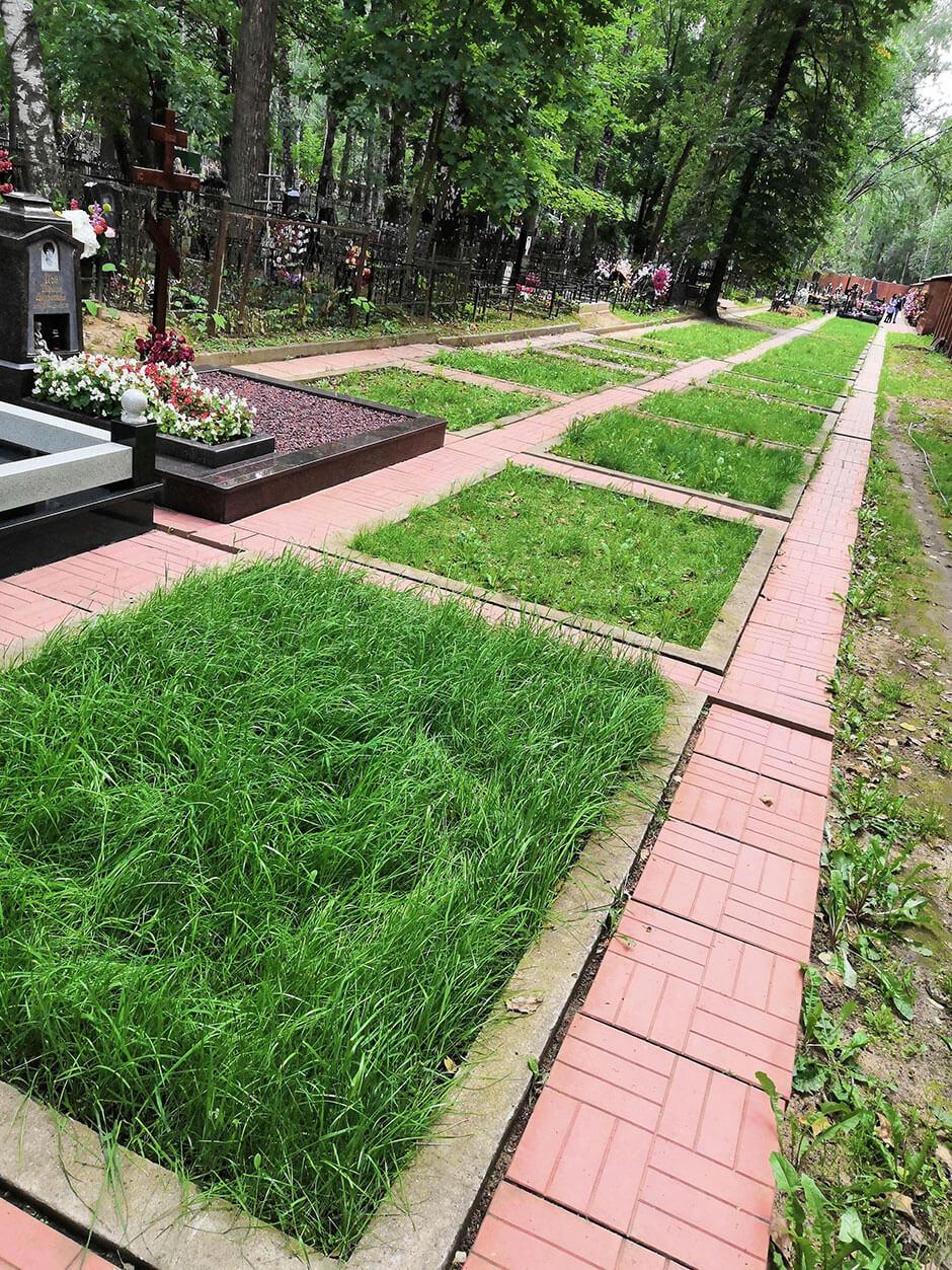Новолужинское кладбище. Фото 2