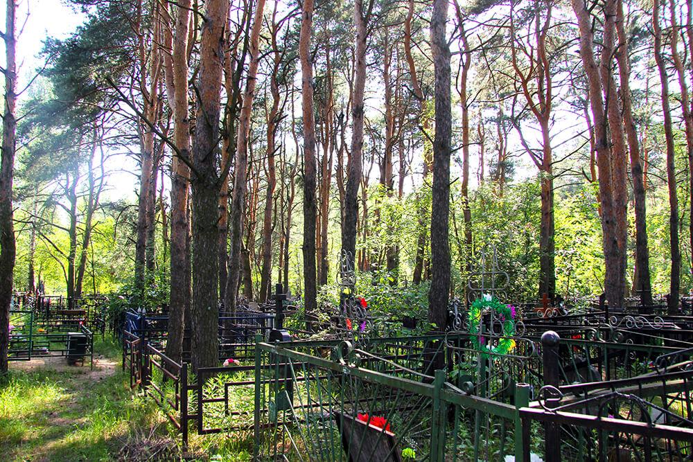 Родниковское кладбище. Фото 15